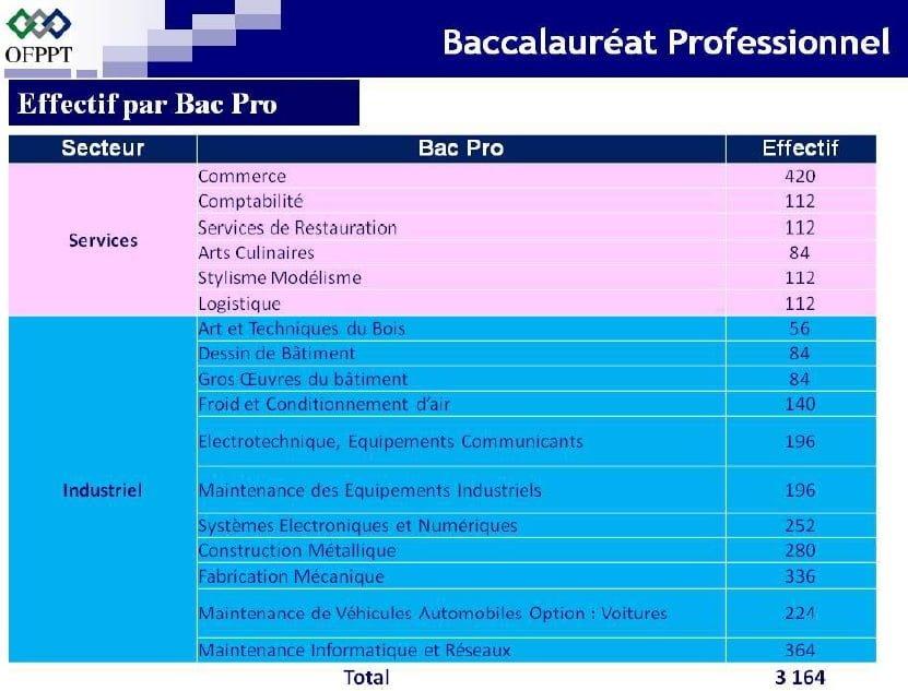 البكالوريا المهنية