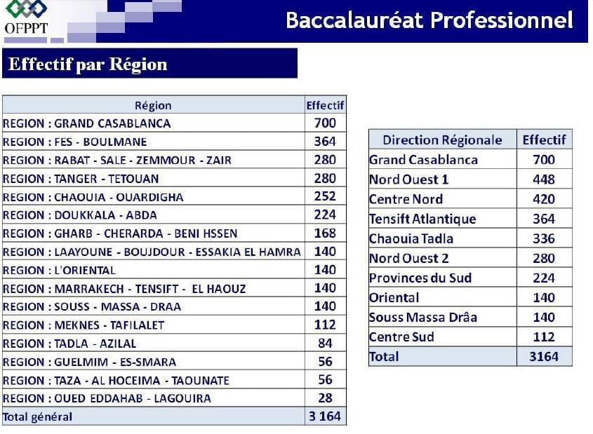 التسجيل في البكالوريا المهنية