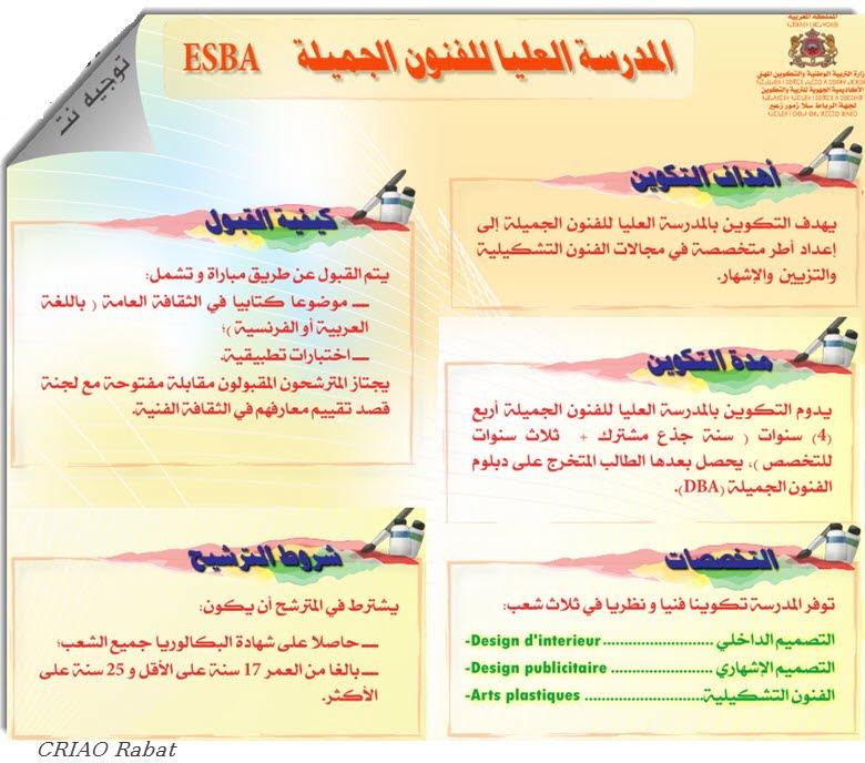 ESBA المدرسة العليا للفنون الجميلة الدارالبيضاء